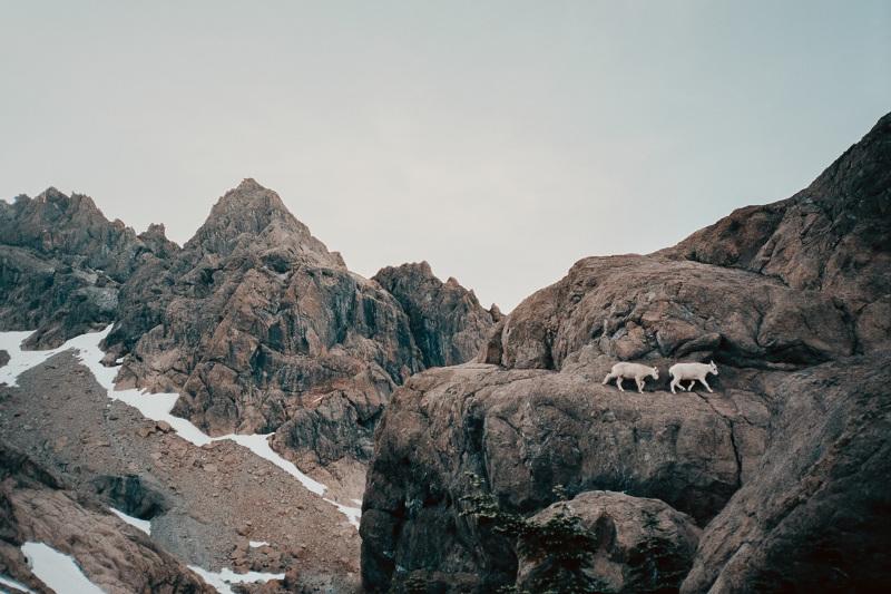 Cascadia-100_48_800