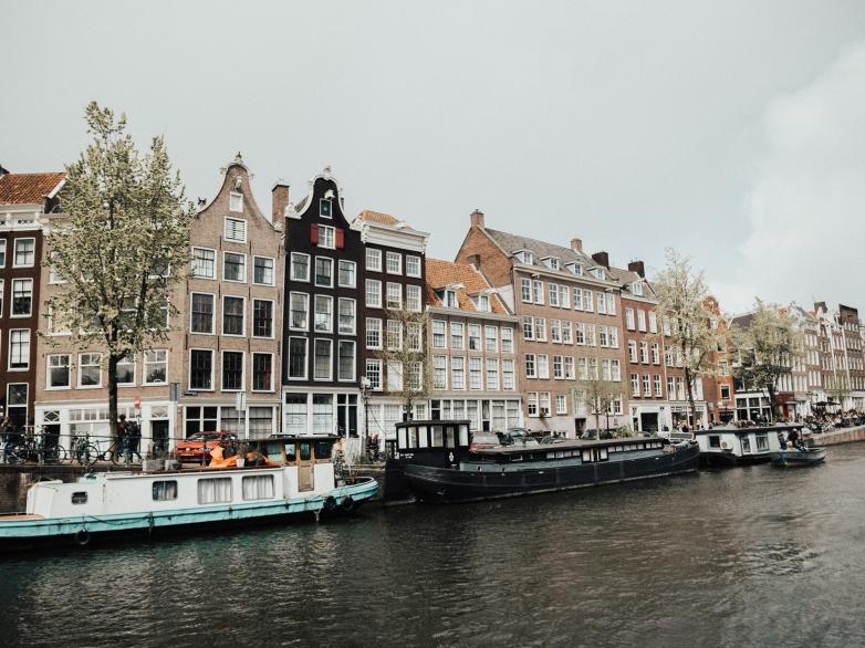 kaci_baum_amsterdam