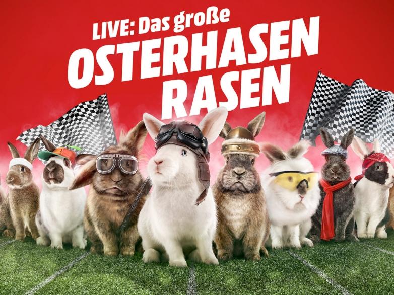 Media-Markt-Das-grosse-Hasen-Rasen