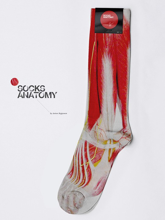 anatomysocks