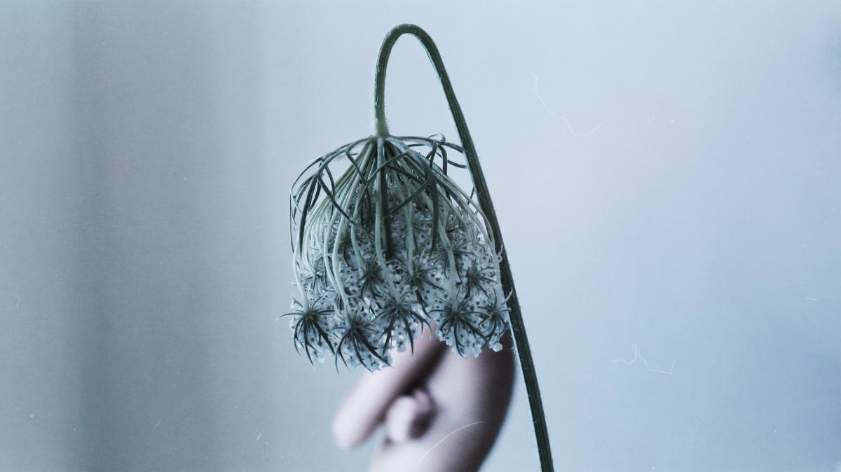 silenceeffects-yulianamendoza-01