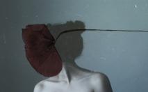 silenceeffects-yulianamendoza-04