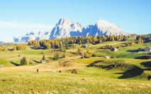 southtyrol-nature-17